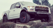 Ryan Sheckler Raptor