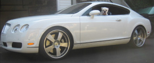 Rob Drydek's White Bentley